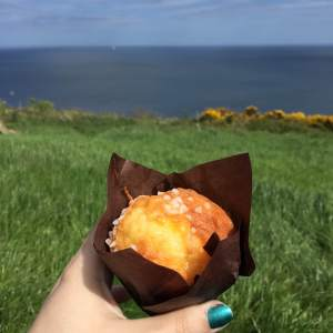 Bright muffin, bright view!